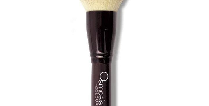 Full Face Brush