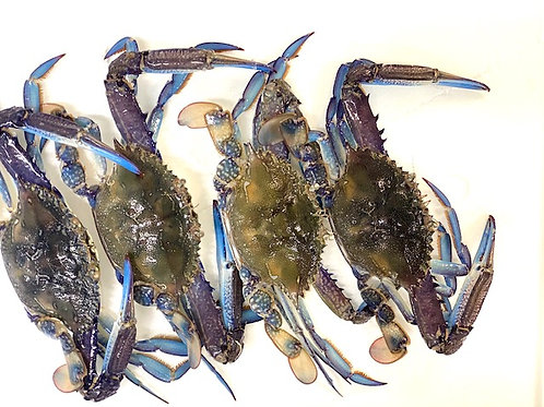 Blue Swimmer Crabs - 1kg Lots