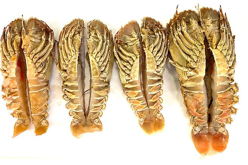 Jumbo Moreton Bay Bugs (cut & cleaned) - 1kg lots