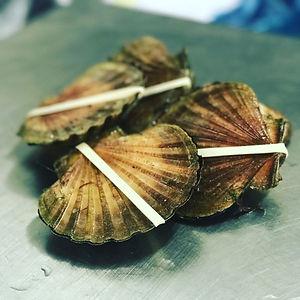 Melbourne, Wholesale, Online, Scallop, Prawn, Lobster, Crab