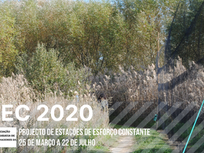 PEEC 2020