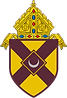 CoA_Roman_Catholic_Diocese_of_Rochester.