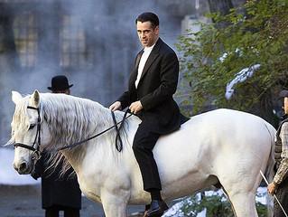 Осторожно! Прынц на белом коне.