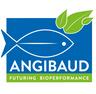 angibaud.png