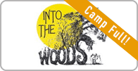 intothewoods1-full.png