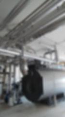 canne fumarie industriali