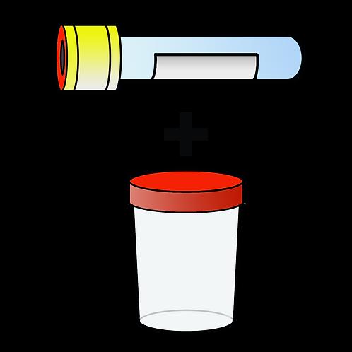 3.4. Все включено (общий анализ + белок/креатинин)