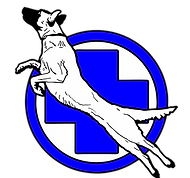 лого1 на сайт_edited.png