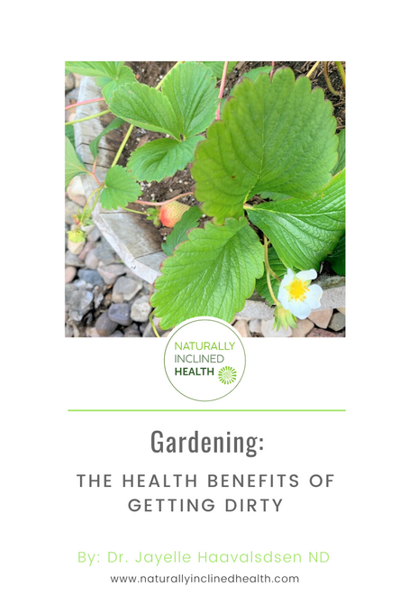 Gardening: The Health Benefits of Getting Dirty