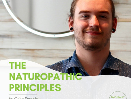 The Naturopathic Principles: How it affect my massage therapy and manual osteopathy practice