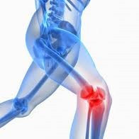 Knee Pain | Medowie Physio | Mike Paterson