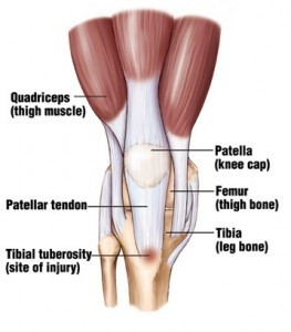 Knee Pain in Children?