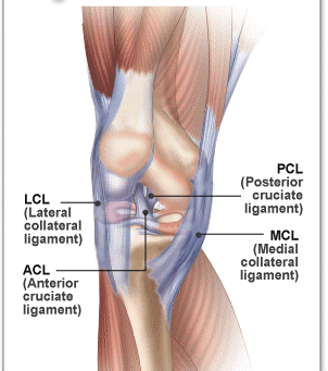 Knee Pain – Ligament Injuries (Part 2)