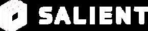 Salientlogo horizontal large - white let