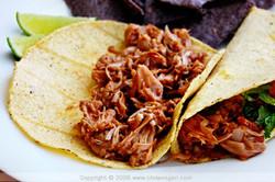 Jack Fruit Tacos