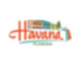 Town of Havana logo.png
