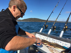 Southern Tasmanian Charters