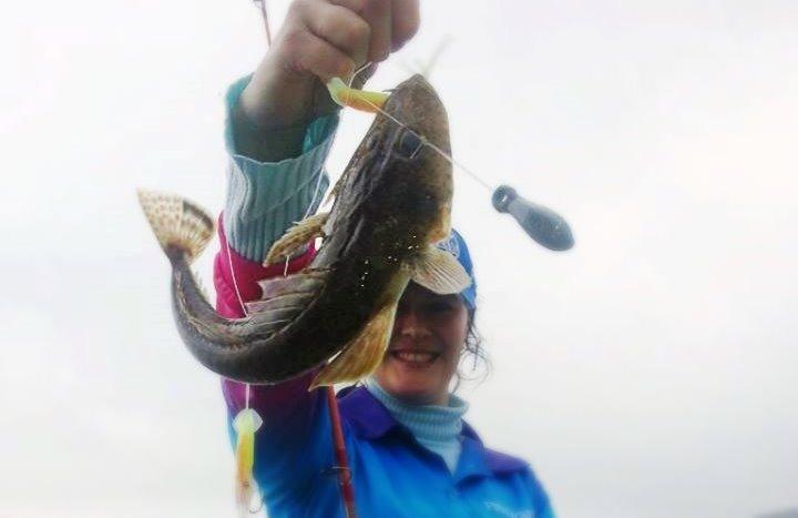 Flathead Fishing | Mr Flathead