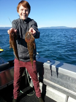 Mr Flathead | Tasmanian Tours