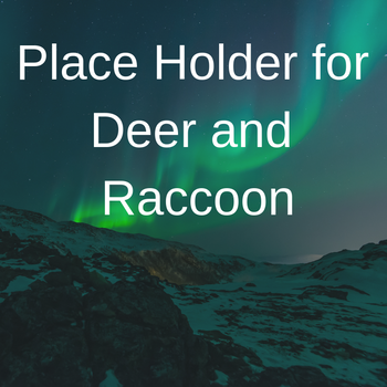 Place Holder for Deer and Racoon.png