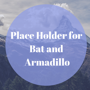 Place Holder for bat armadillo.png