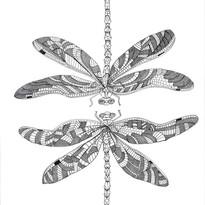 dragonfly print.jpg
