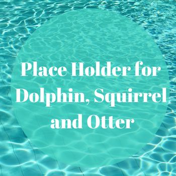 Place Holder for Dolphin, Squirrel Otter