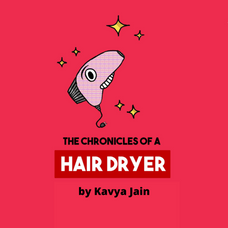 The chronicles of a Hairdryer