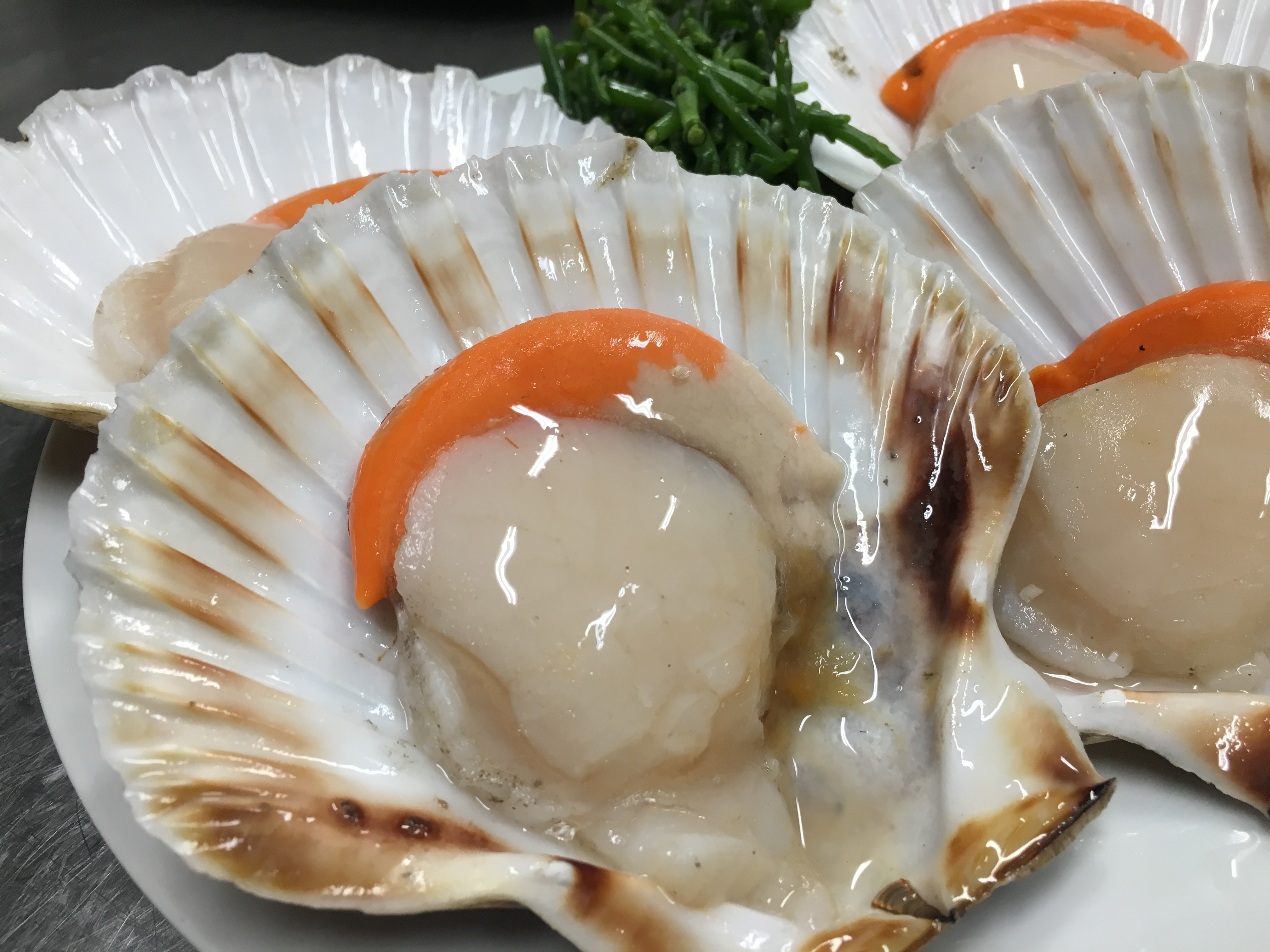 seafood-restaurant-budapest-bottega-di-brontolo (14)