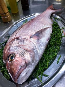 seafood-restaurant-budapest-bottega-di-brontolo (16)