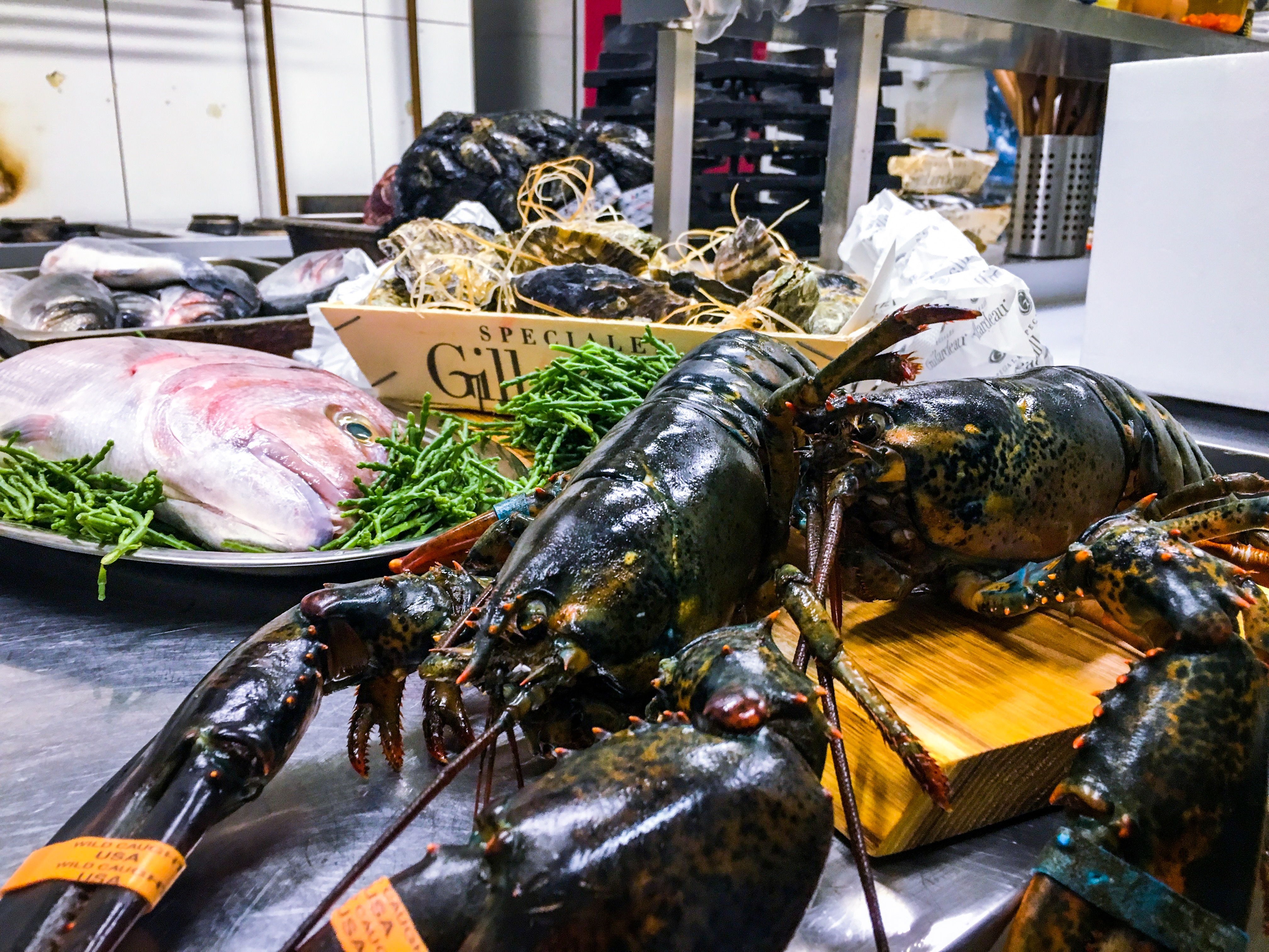 seafood-restaurant-budapest-bottega-di-brontolo (5)