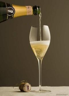 Franciacorta sparkling wine glass