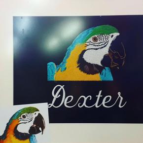 parrot embroidery comparison.JPG