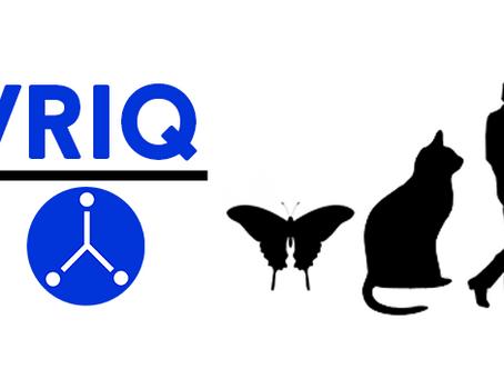 VRIQ: Testing Creative Problem Solving in VR