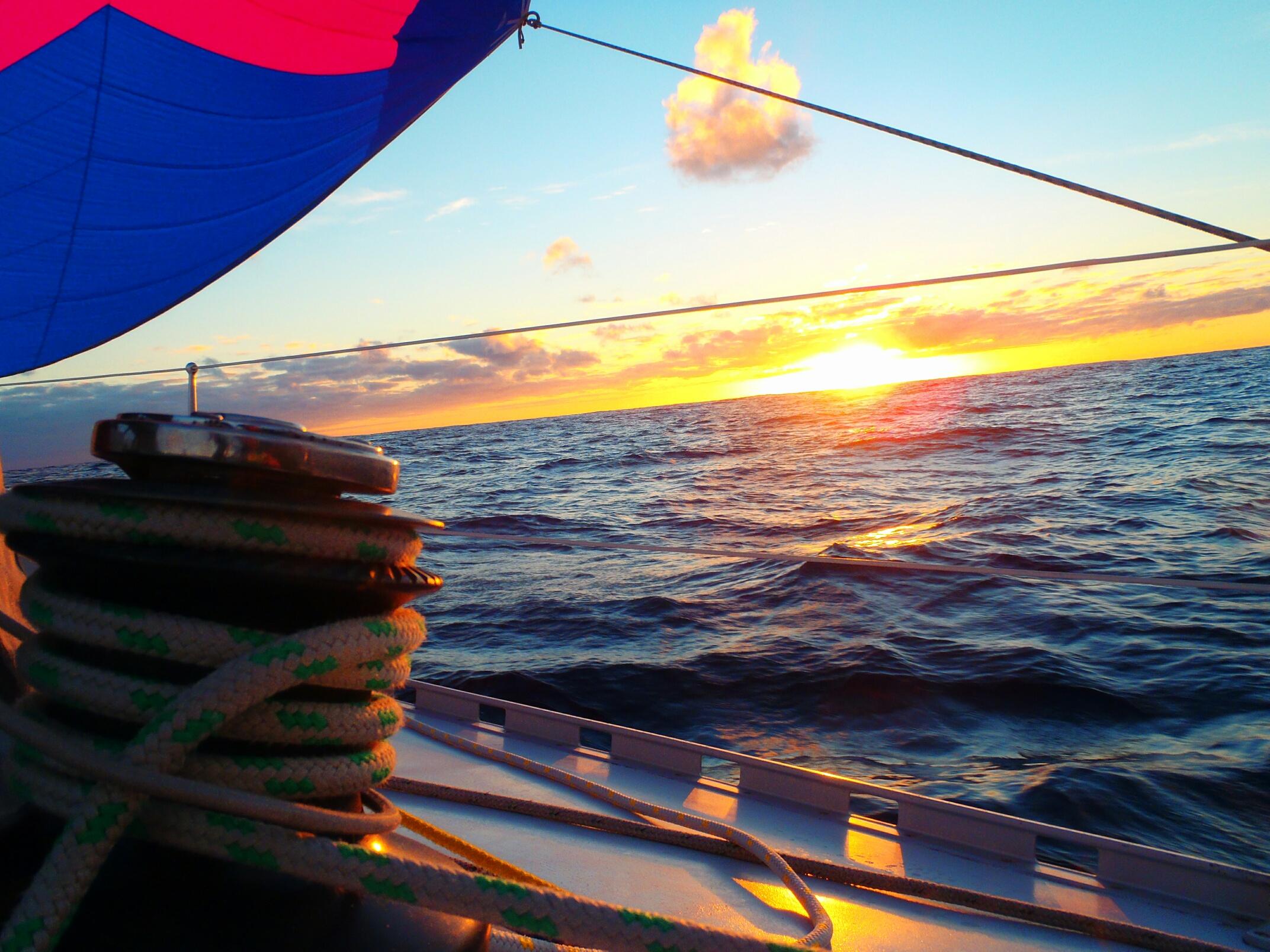 traversée_l'atlantique,_cap_vert,_la_Martinique_060_resized_1