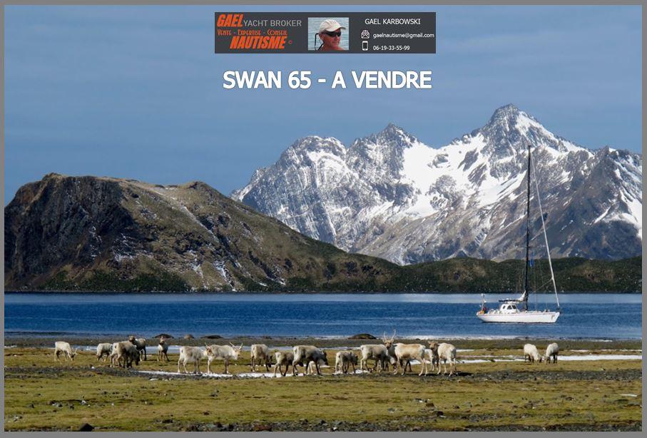 SWAN-651-A-VENDRE-GAELNAUTISME-F