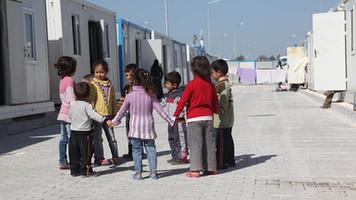 FAO'dan Suriyeli mülteciler için yeni yol haritası