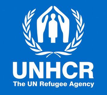 Kilis'te Mülteci Çalıştayı