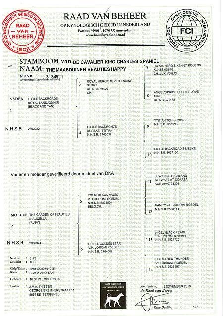 Stamboom Dewi.jpg