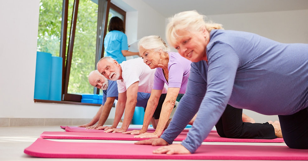 Active%20seniors%20in%20the%20fitness%20