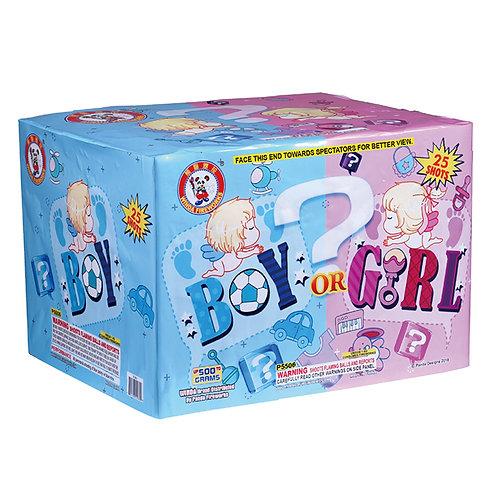 Boy or Girl (Blue) Gender Reveal!