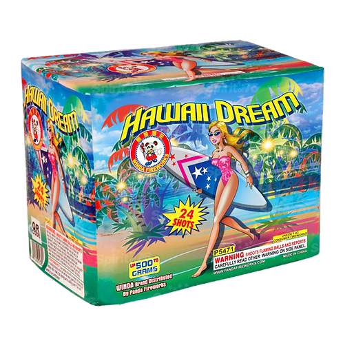 Hawaii Dream (2021 NEW PERFORMANCE)