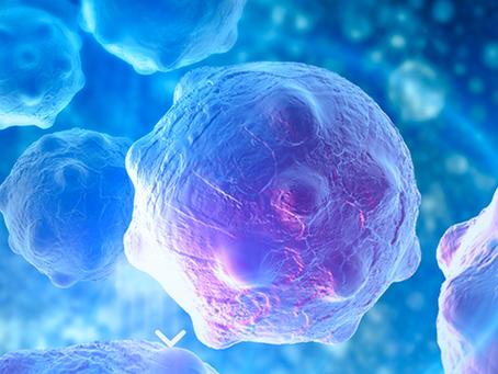 Novedades de la inmunoterapia contra el cáncer.