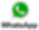 WhatsApp_logo-color-vertical.svg_.png
