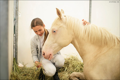 reportage photographer Florence, Tuscany, Italy (Horse club)