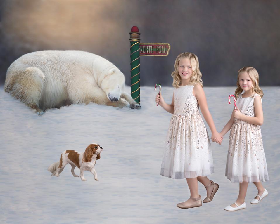 Christmas art photography