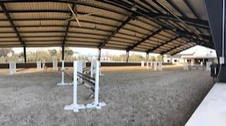 TopLine Sporthorse
