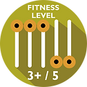 Driftwood Eco Tours - Fitness level required 3+/5
