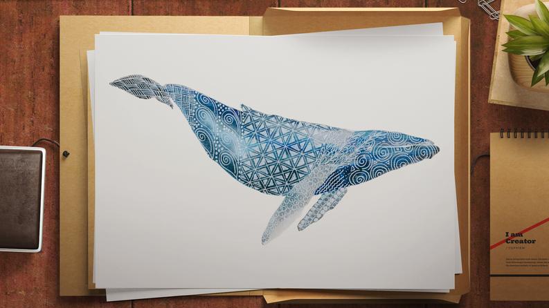 Limited Edition Humpback Whale Print. Watercolour & gel pen original by Janet Nikora