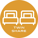 Twin Share Icon.png